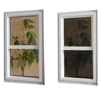 thermochromic glass solutions by Smart Windows Colorado